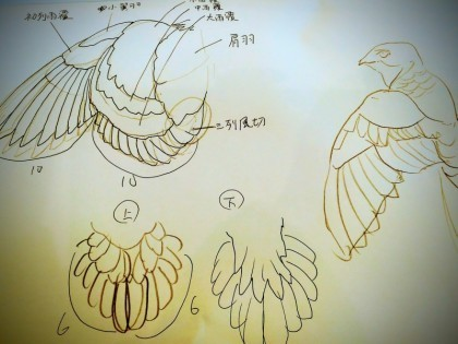 kotori11.jpg